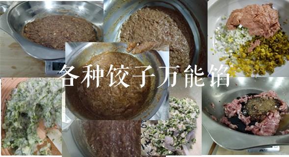 饺子培训,水饺技术培训!